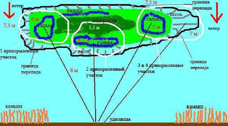 карта для карповой рыбалки