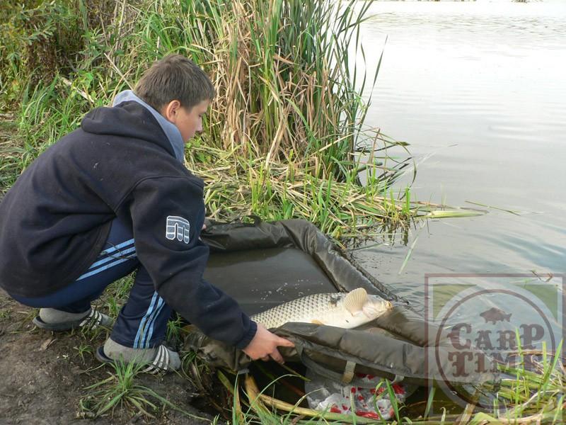 рыбалка платная в воронежской области